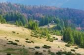 Igreja de madeira nas montanhas — Fotografia Stock