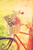 Vintage bicycle esperando perto da árvore — Fotografia Stock