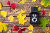 Autumn leafs and camera on wooden table. — Fotografia Stock