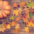 Pumpkin, leafs and chestnuts with cone on wooden table. — Stock Photo #57176631