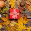 Gift box on autumn background. — Stock Photo #57176661