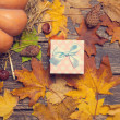 Gift box on autumn background. — Stock Photo #57176663