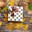 Gift box on autumn background. — Stock Photo #57176687