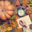 Female hand writing something in notebook on autumn background. — Stock Photo #57176733