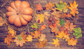 Pumpkin, leafs and chestnuts with cone on wooden table. — Stock Photo