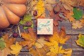 Gift box on autumn background. — Stock Photo
