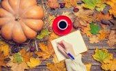 Female hand wrinig something in notebook on autumn background. — Stock Photo