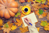 Female hand wrinig something in notebook on autumn background. — Stock Photo