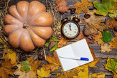 Alarm clock and note with pen on autumn table. — Photo
