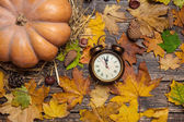 Alarm clock on autumn table. — Foto de Stock