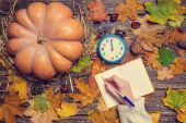 Female hand writing something in notebook on autumn background. — Stock Photo