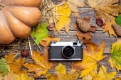 Vintage camera on autumn table. — Stock Photo