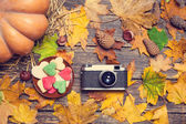 Vintage camera and cookie on autumn table. — Stock Photo