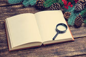 Retro book and loupe near pine branches on a table. — Stock Photo
