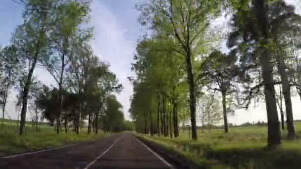 Conducir coche por carretera no urbano — Vídeo de stock