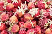 Fresh red strawberries gathered — Stock Photo