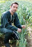 Farmer working in a leek field — Stock Photo