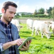 Young attractive farmer using tablet in a field — Stock Photo #58141355