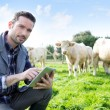 Young attractive farmer using tablet in a field — Stock Photo #59217271