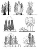 A set of tree silhouettes , for architectural or landscape design — Stock Vector