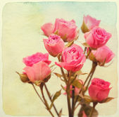 Roses bouquet. Vintage retro style. Paper watercolor textured. — Stock Photo