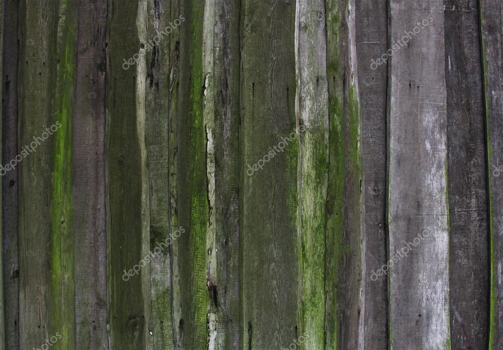 Pareti In Legno Vecchio : Parete fatta di vecchie plance legno marci ...