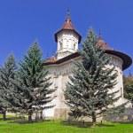 Christian Orthodox Monastery — Stock Photo #61342539