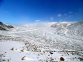 Arctic: glacier surface — Stok fotoğraf