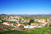 Village in  douro valley, Portugal — Stock Photo
