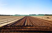 Arable land with furrows aspiring to horizon — Stock Photo
