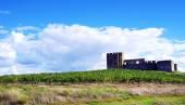 Valongo castle, Evora,Portugal — ストック写真