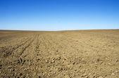 Plowed field in  rural landscape — Stock Photo