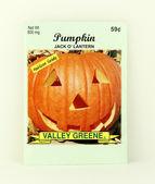 Package of Valley Greene Pumpkin Seeds — Stock Photo