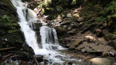 Beautiful waterfall in Carpathian Mountains — Stock Video
