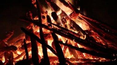 Flames of bonfire. Burning firewood — Stock Video