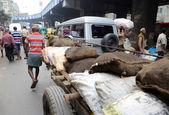 Hard working Indians pushing heavy load through streets in Kolkata — Stock Photo