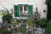 Mediterranean house with green door and flowers — Stock Photo