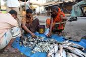 Unidentified man sells fish at fish market in Kumrokhali, West Bengal, India — Stock Photo