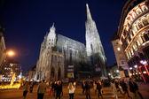 Katedrála svatého štěpána ve vídni — Stock fotografie