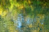 Water surface  with reflection of foliage of trees — Stock Photo