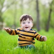 Little boy sits on a green lawn — Stock Photo #56213561