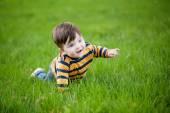 Little boy crawling on a green lawn — Stock Photo