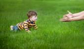 Son crawling in her fathers hands on green grass — Stock Photo