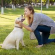 Beautiful woman with her dog. Labrador retriever — Stock Photo #77135729