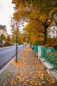 Street view in Karlovy Vary — Stock Photo