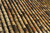 Background of old roof tiles covered by moss — Foto de Stock