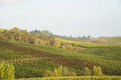 Chianti in Autumn — Foto de Stock