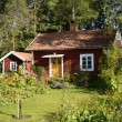 Swedish red little cottage — Stock Photo #60612647