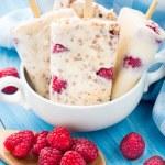 Frozen yogurt with oats and raspberries — Stock Photo #55908571