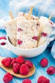 Frozen yogurt with oats and raspberries — Foto Stock